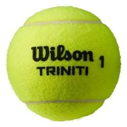 Piłka tenisowa Wilson Trinity Club